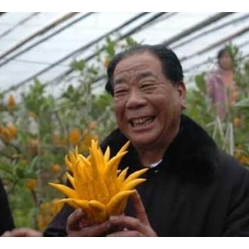 """山西""""蔬菜大王""""孙忠"""