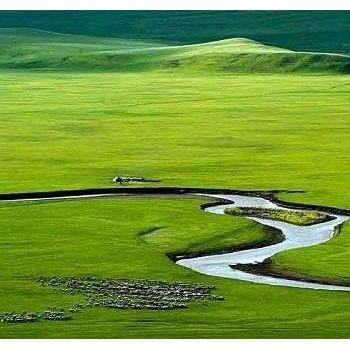 内蒙古10大特色美食,第一个就馋得流口水