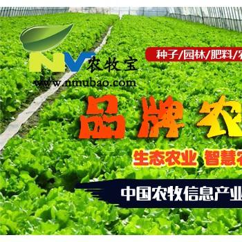 果蔬保鲜技术集锦