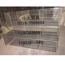 出售鸽子笼兔子笼鸡笼鸟笼狗笼宠物笼鹌鹑笼鹧鸪笼猫笼貉笼